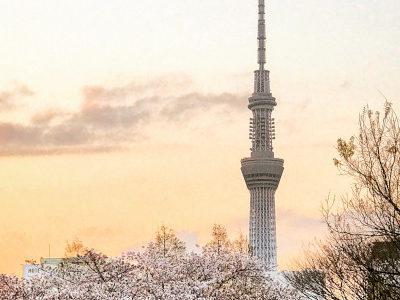 WBCSD Hybrid Council Meeting Tokyo