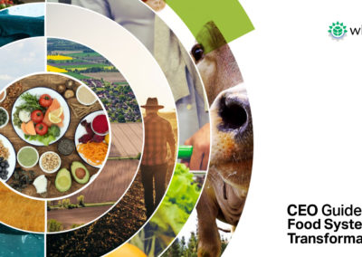 CEO Guide to Food System Transformation