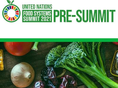 Pre-UN Food Systems Summit