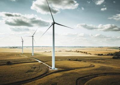 International Energy Agency 'Net Zero by 2050 report'—Business summary