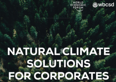 Natural Climate Solutions for Corporates